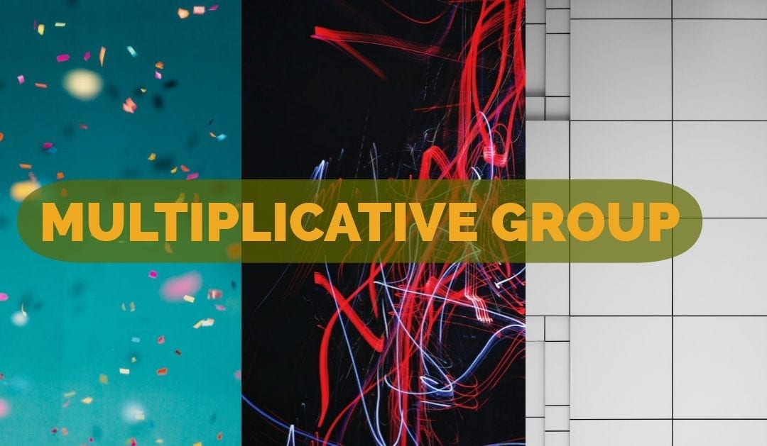Multiplicative Group
