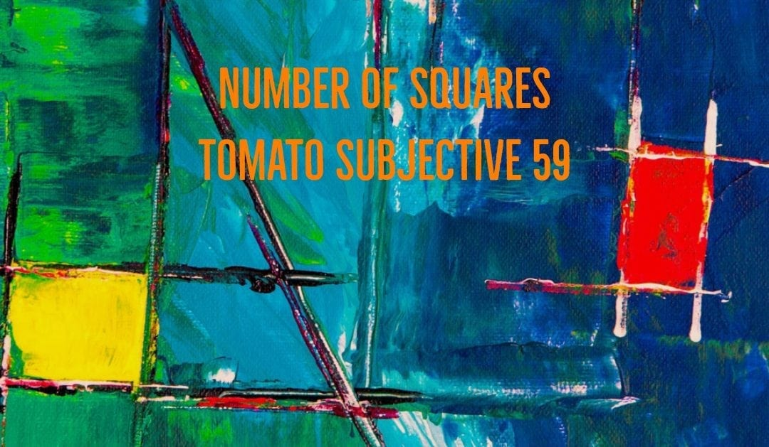 Test of Mathematics Solution Subjective 59 – Number of squares