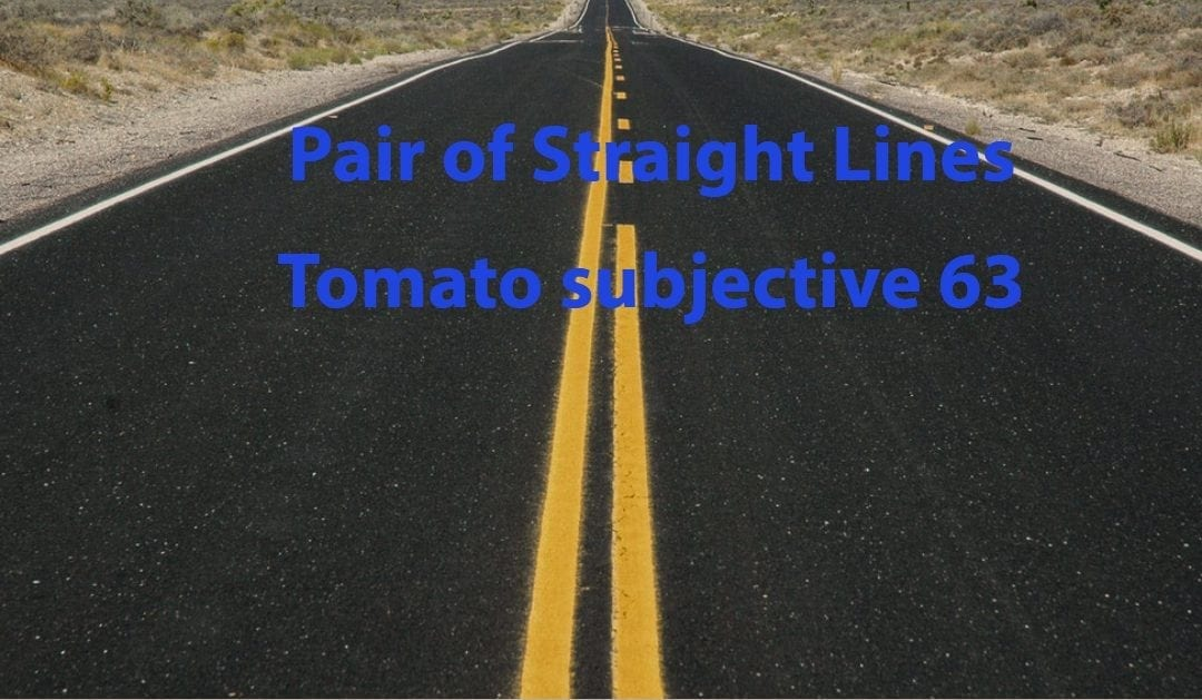 Test of Mathematics Solution Subjective 63 – Pair of Straight Lines