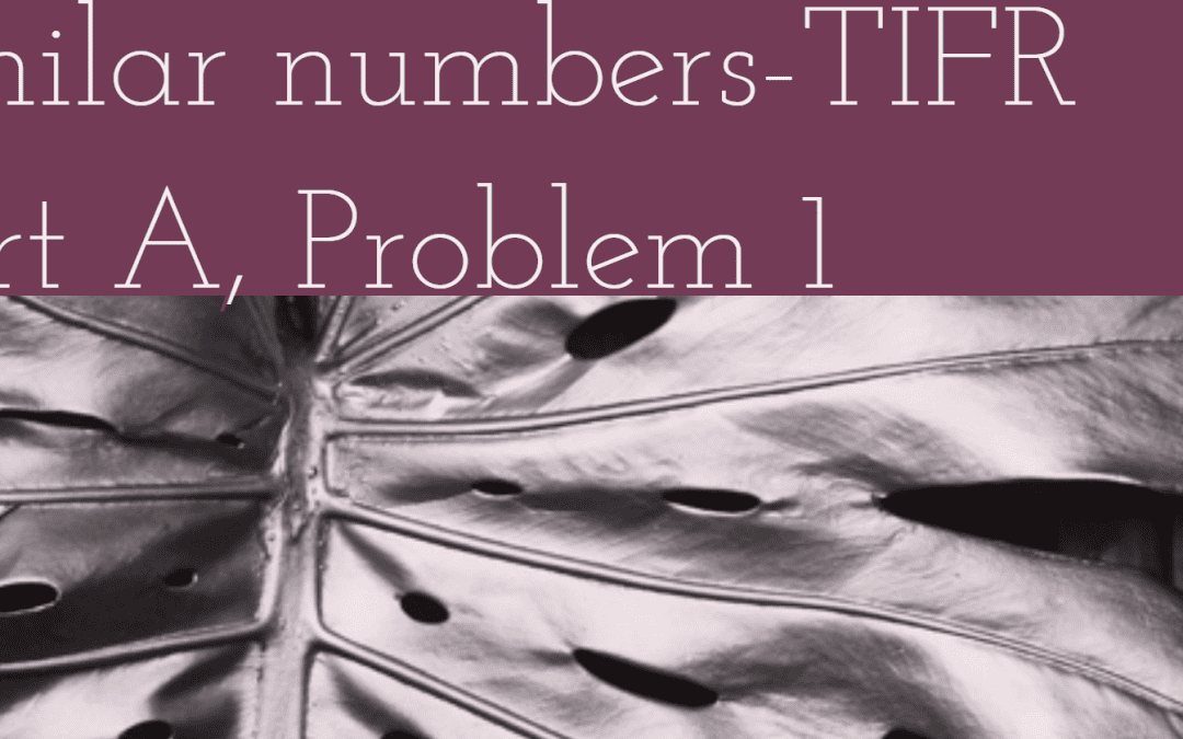 Series in similar numbers-TIFR 2019 GS Part A, Problem 1