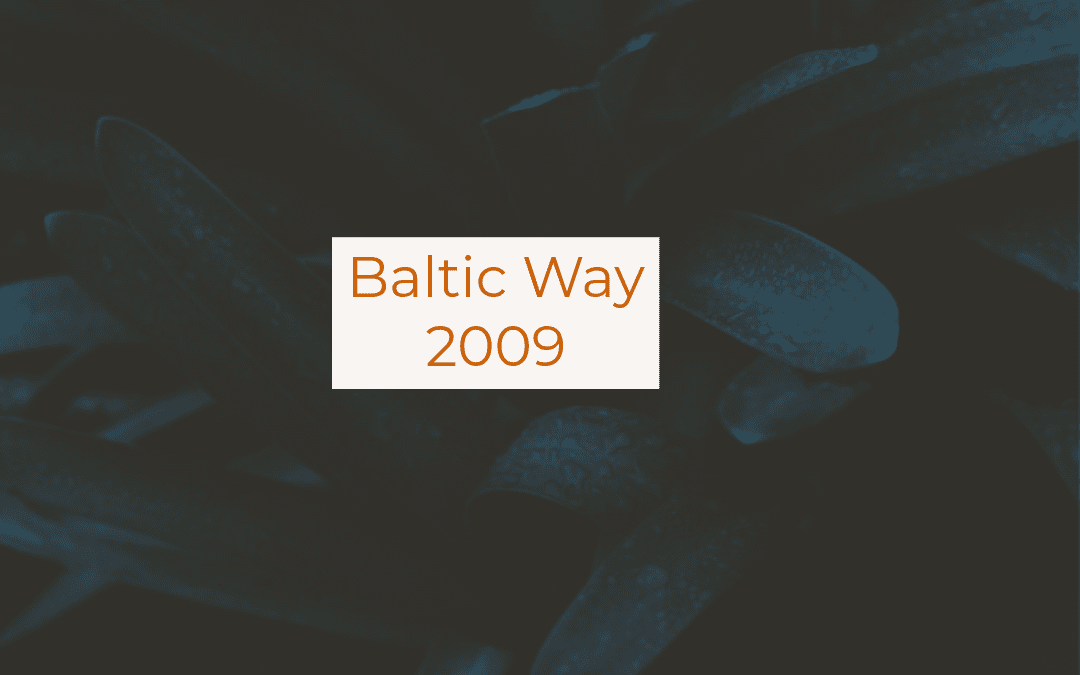 Baltic Way 2009