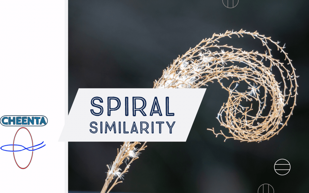 Spiral Similarity