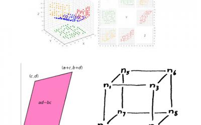 Data, Determinant and Simplex