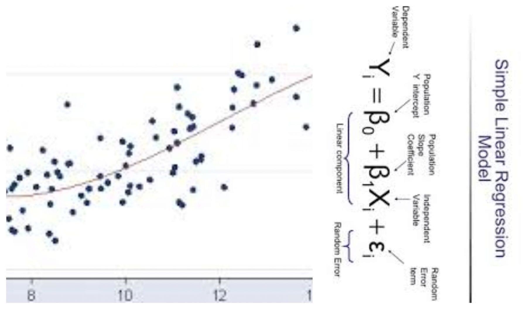 Invariant Regression Coefficient