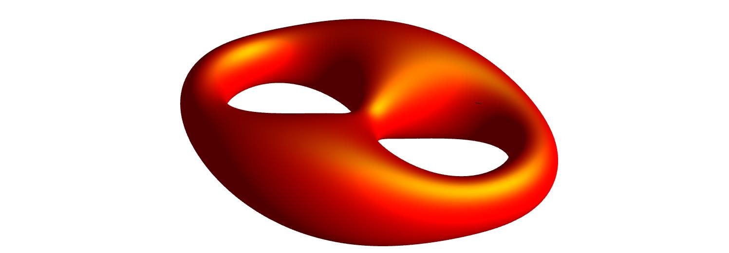 Genus two surface